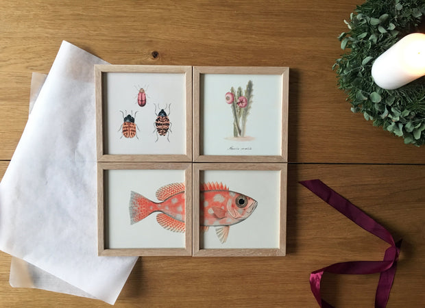 Set of four Mini Prints / Advent Gift