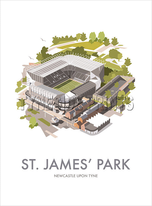 St. James' Park - Newcastle - Art Print