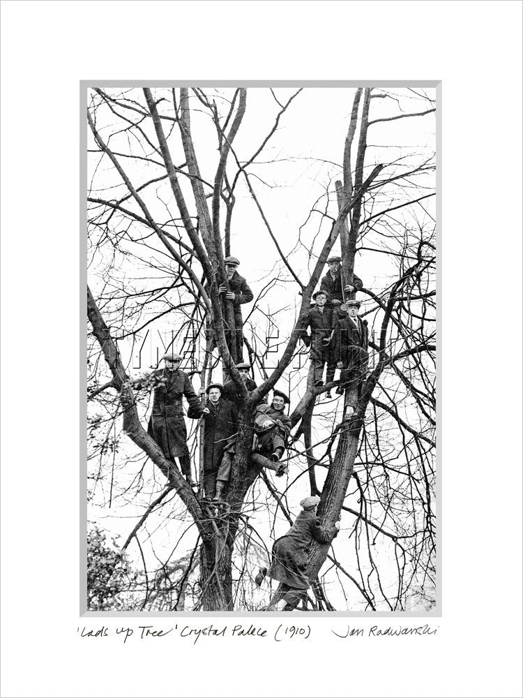 Lads Up Tree At Crystal Palace 1910 Mounted Fine Art Print