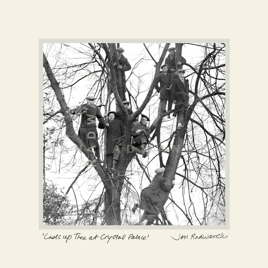 Lads Up Tree At Crystal Palace | Mounted Fine Art Print