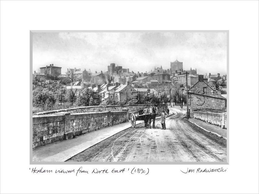 Hexham Viewed From North East 1890 Mounted Fine Art Print