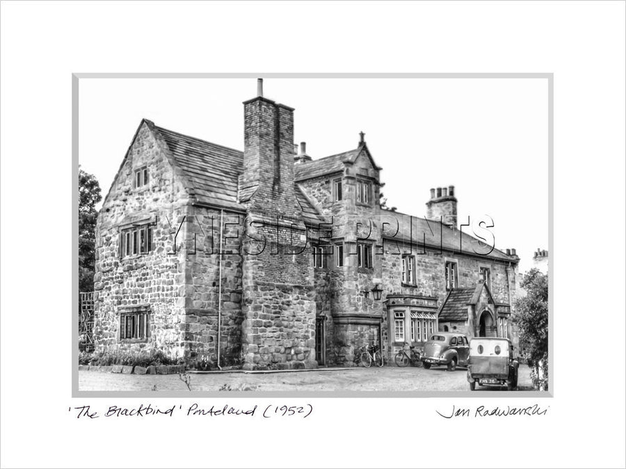 The Blackbird Ponteland 1952 Mounted Fine Art Print