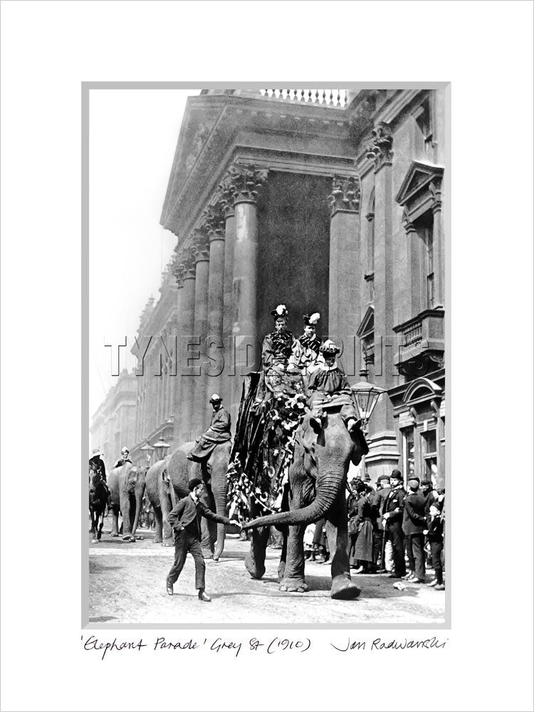 Elephant Parade Grey Street Newcastle 1910 Mounted Fine Art Print