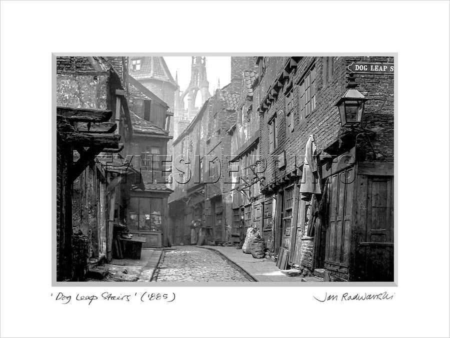 Dog Leap Stairs Newcastle 1895 Mounted Fine Art Print