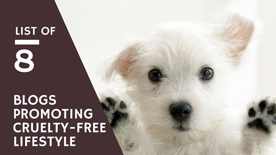 Cruelty Free Blogs We Love (And You Would, Too)