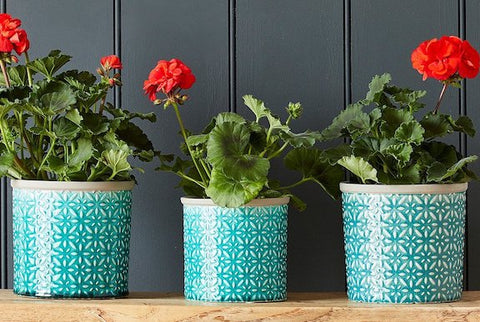 Plantepotter (Indoor Plant Pots & Vases)