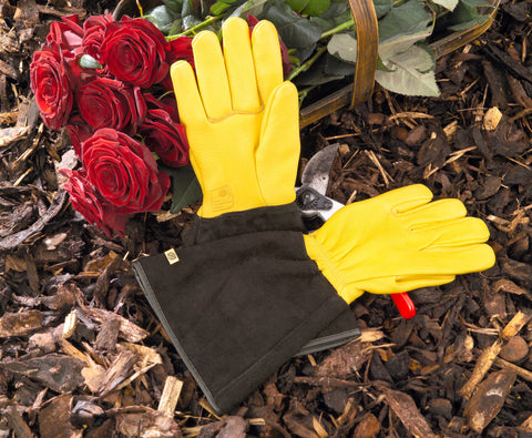 Hagehansker - Gold Leaf Tough Touch Gardening Glove