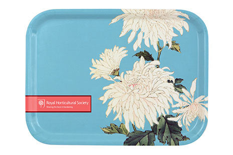 Krysantemum brett (Chrysanthemum tray)