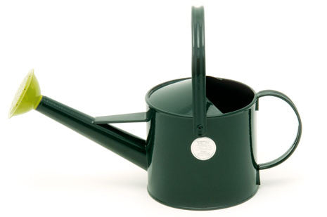 Vannkanne - grønn (Watering Can - 1 Litre Green)