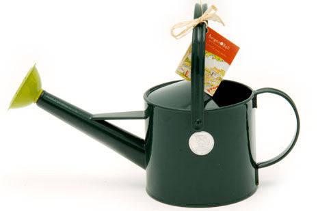 Liten vannkanne (Children's Watering Can)