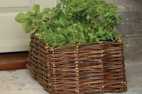 Urteplantekasse (Herb Planter - Willow)