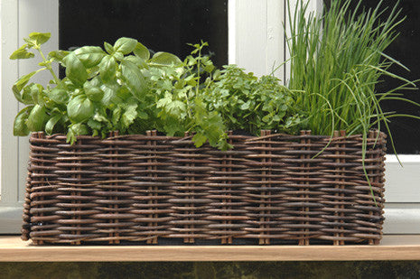 Vindu plantekasse (Window Box Planter - Willow)