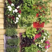 Vertiplant®6 (Vertical salad & herb planter)