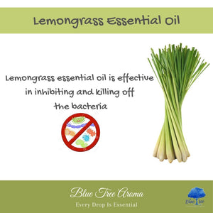 Lemongrass Essential Oil - Blue Tree Aroma