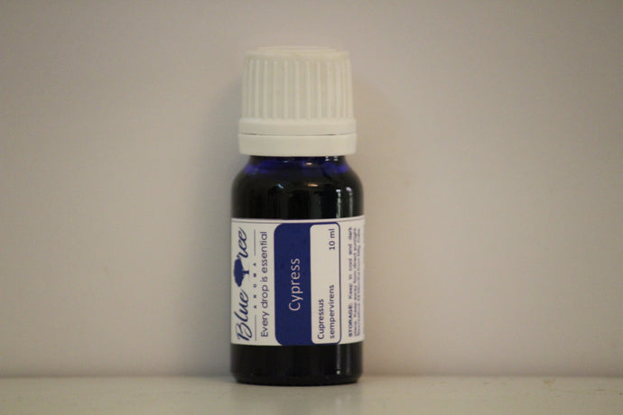 Cypress Essential Oil - Blue Tree Aroma