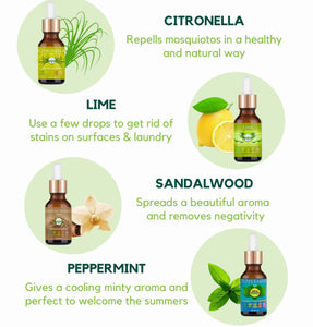 4 Oils for Home