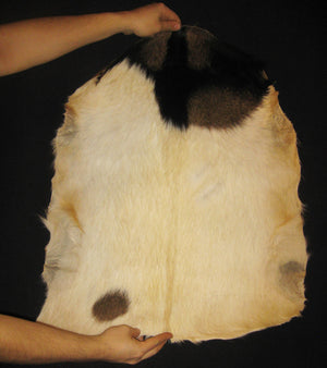 African Whole Hide Goat Skins - with Hair