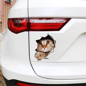 Cat Sticker - 3D Kitten Sticker For Car