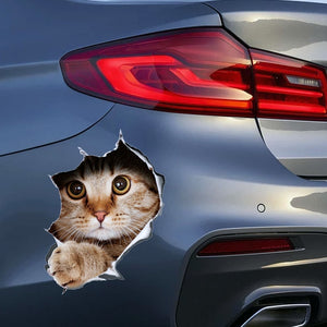 3D Kitten Sticker For Car