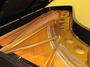 RARE Custom Steinway & Sons Model D 9'-SOLD