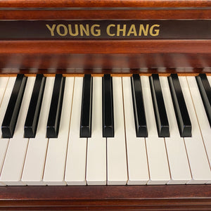 Young Chang Y-118 (47'')-SOLD
