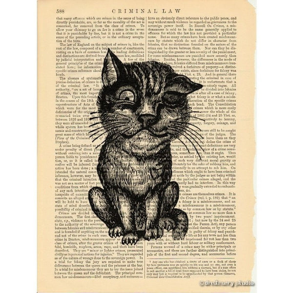 Winking Cat Art Print