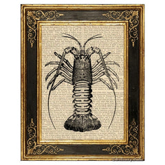 Crawfish Art Print