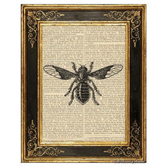 Bee Fly Art Print
