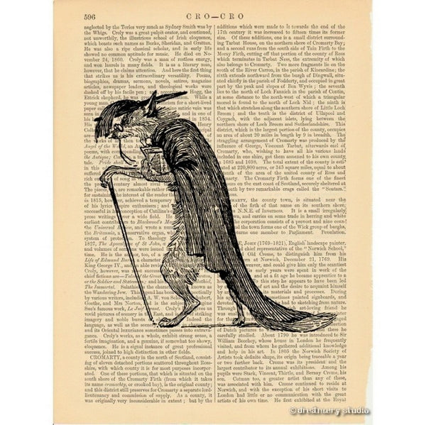 Wise & Old Fox Philosopher Art Print