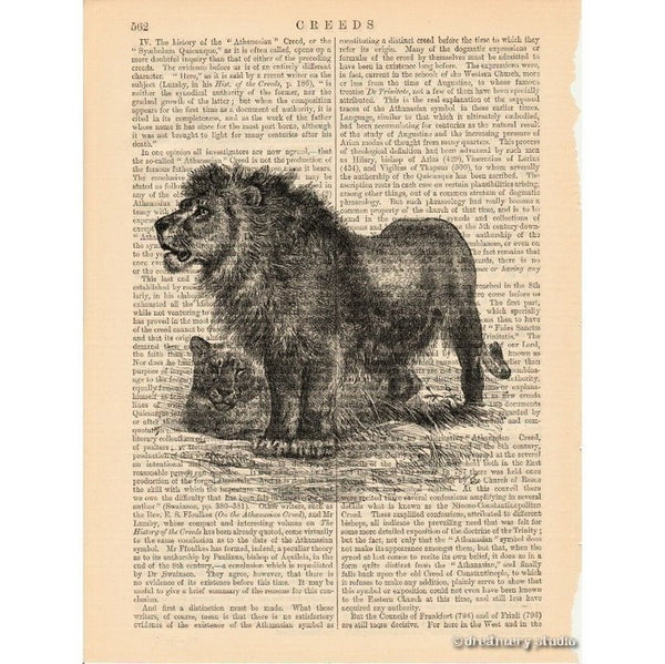 Lion and Lioness Art Print