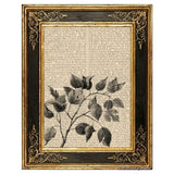 Mulberry Branch Art Print