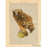 Buffy Fish Owl Art Print
