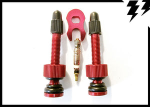 TUBELESS VALVES - 50mm