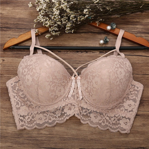 Embroidered Floral Lace Molded Cups Bra