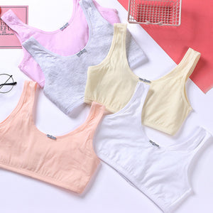 Pack of 3 Crop Top Teenage Cotton Bra