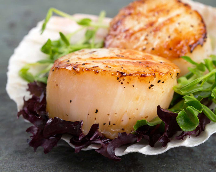 Seared Scallops with Basil Olive Oil