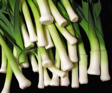 Load image into Gallery viewer, Scallions