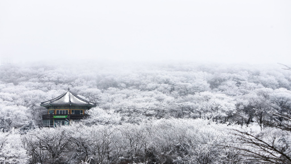 Top Winter Travel Destinations in Korea