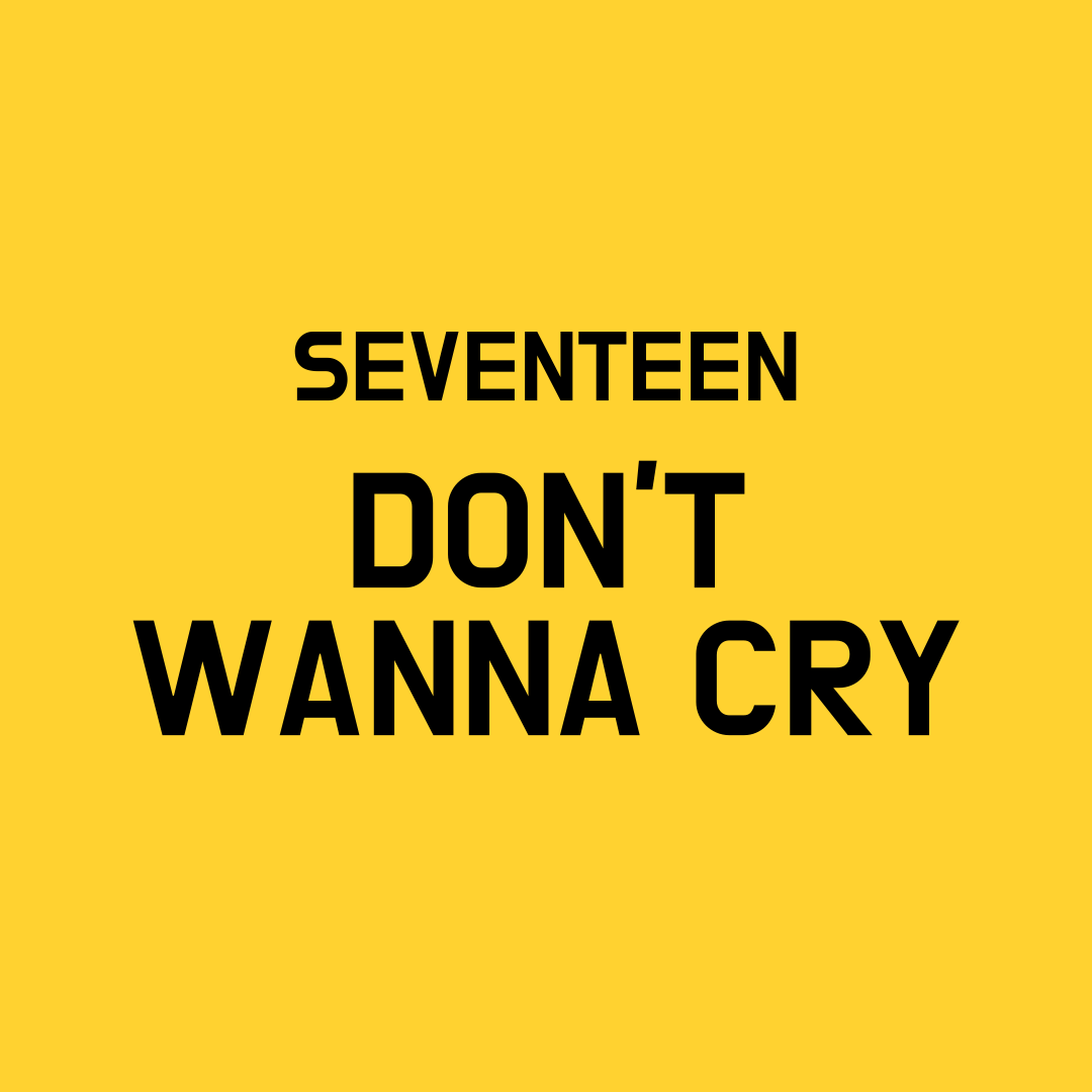 Seventeen Don't Wanna Cry
