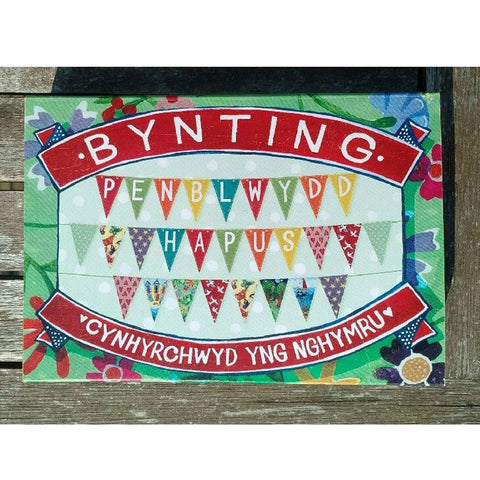 Bunting - Happy Birthday - Penblwydd Hapus-Bunting-The Welsh Gift Shop