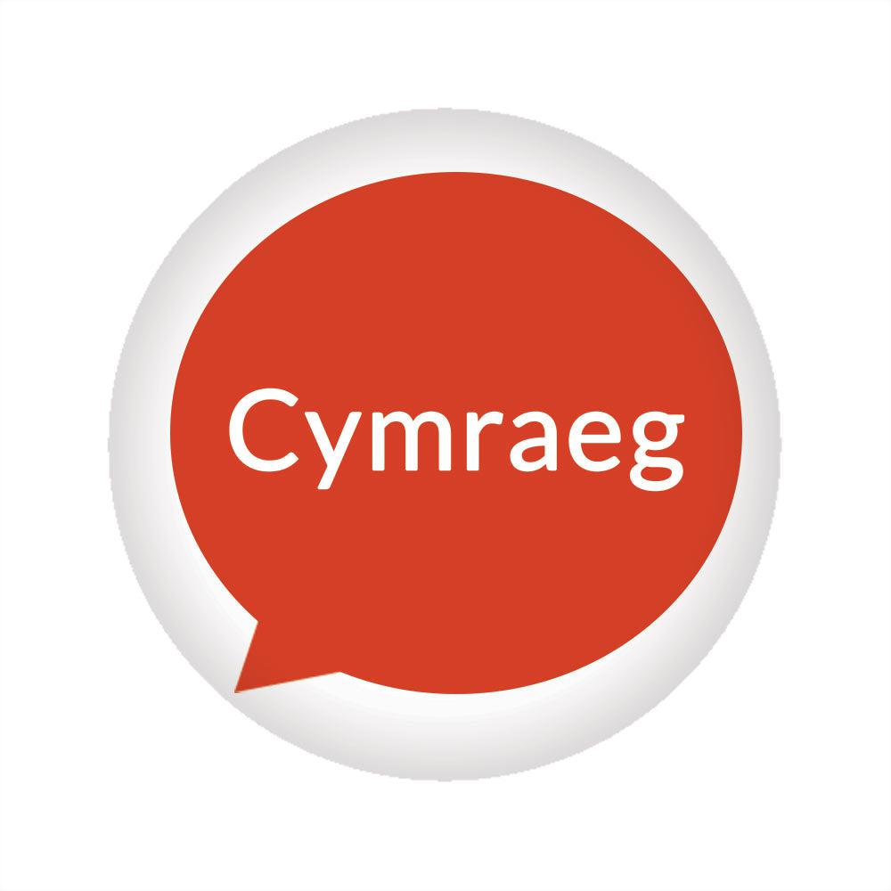 Badge / Pin  - Cymraeg / Welsh Language Speaker