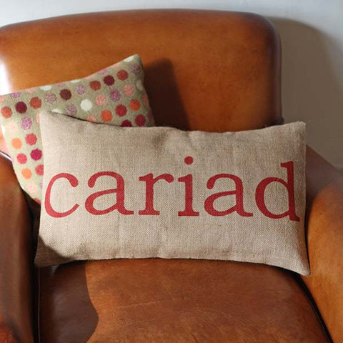 Cushion Cover - Welsh - Cariad / Love-Pillow-The Welsh Gift Shop