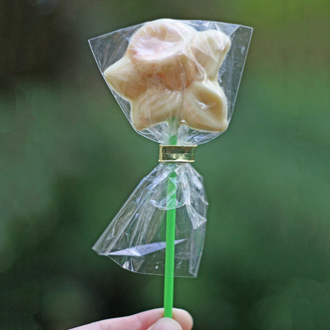 Chocolate Daffodil Lolly - Handmade in Wales