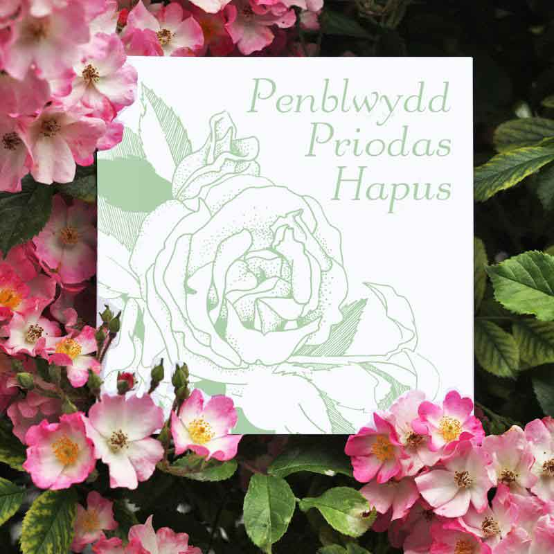 Card - Penblwydd Priodas Hapus - Happy Wedding Anniversary-The Welsh Gift Shop