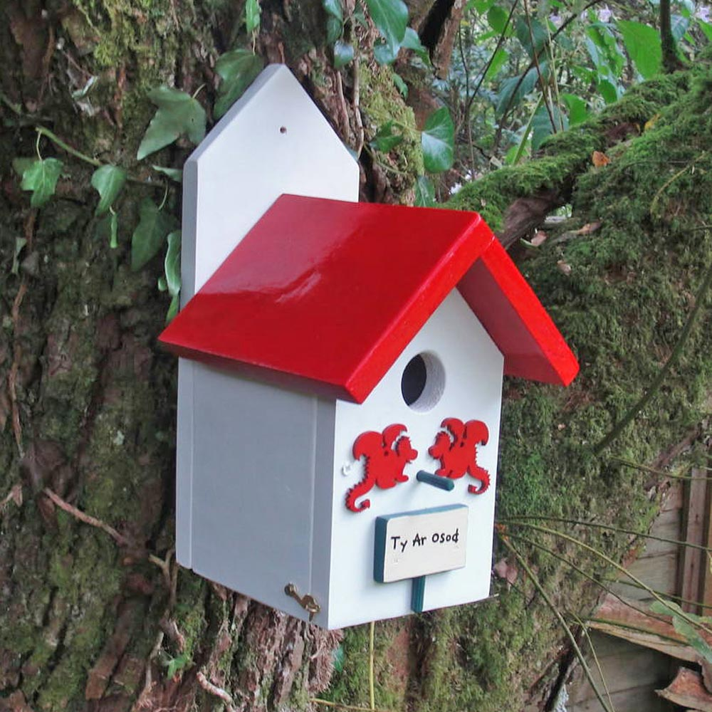 Bird House - Handmade in Wales - Dragon-Bird House-The Welsh Gift Shop