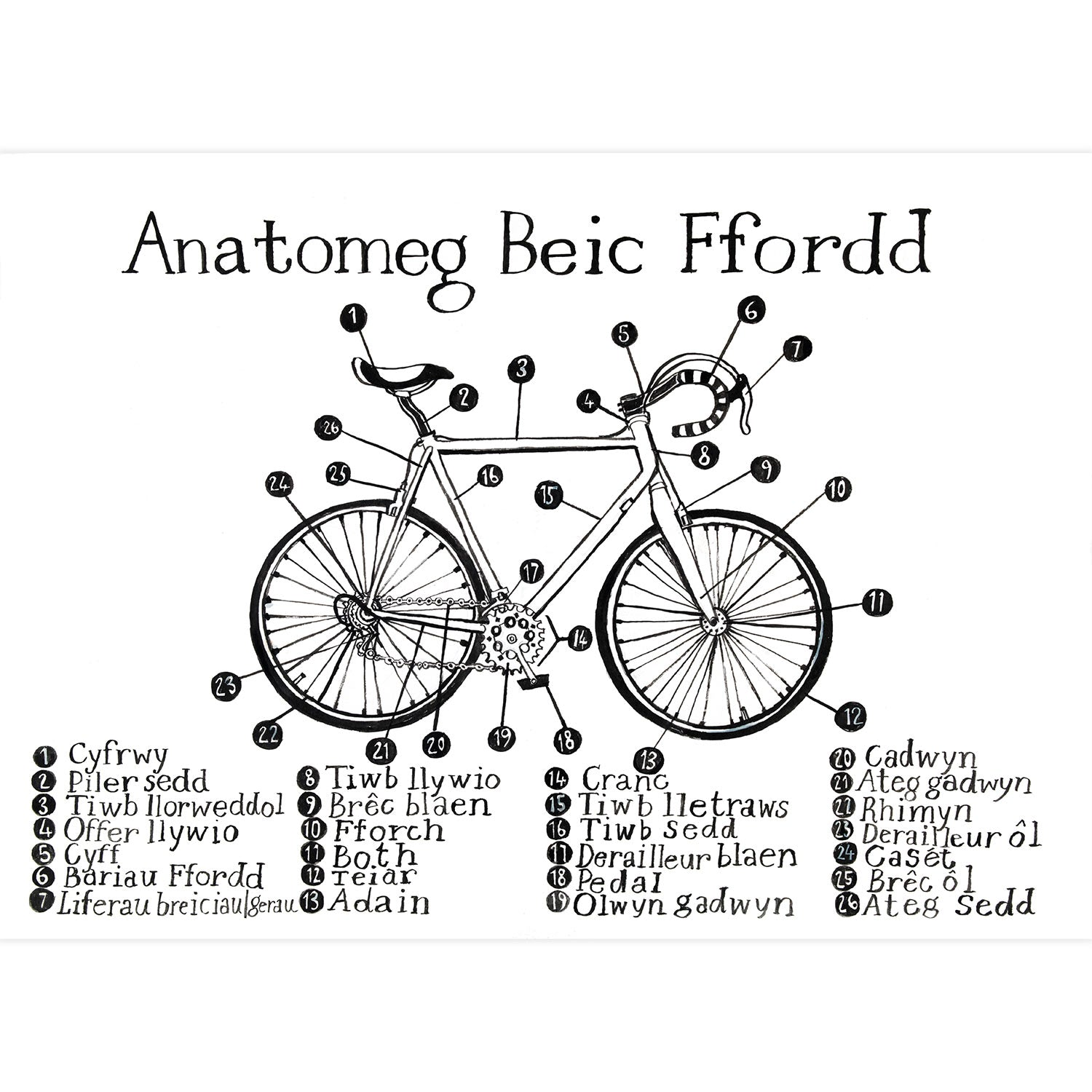 Poster / Print - Anatomeg Beic / Anatomy of a Road Bike - A3