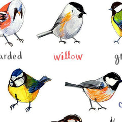 Poster - Welsh Artist - Birds - Tits / Titws-Picture / SIgn-The Welsh Gift Shop
