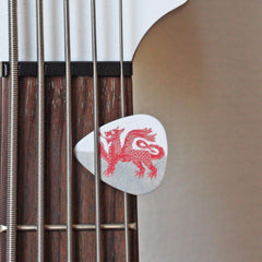Plectrum / Guitar Pick Set - Welsh Dragon & Roc a Rol-plectrum-The Welsh Gift Shop
