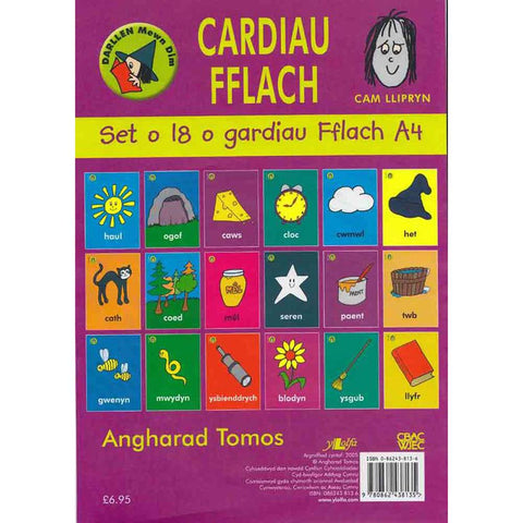 Welsh Flash Cards & Alphabet Poster - Pecyn Cam Y Llipryn Llwyd-The Welsh Gift Shop