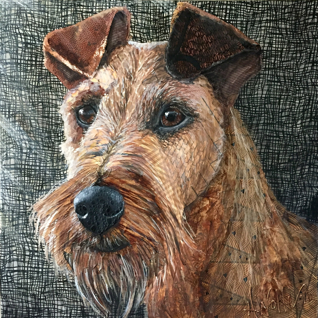 Mocha - Irish Terrier